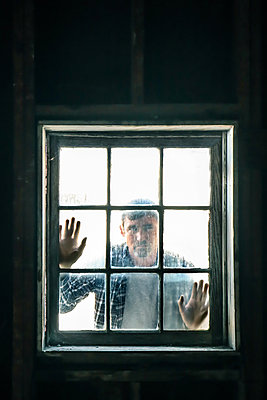 Looking through the window - p1019m2122110 by Stephen Carroll
