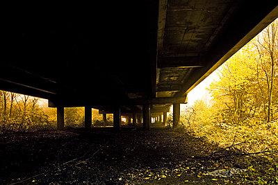 Under a motorway at night - p8510015 by Lohfink
