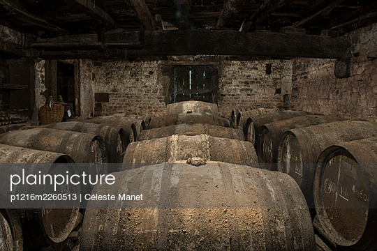 Barrels in winery cellar - p1216m2260513 by Céleste Manet