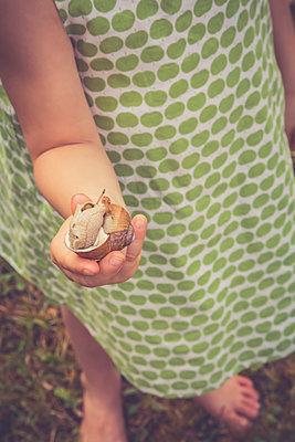 Little girl's hand holding vineyard snail - p300m1081343f by Larissa Veronesi