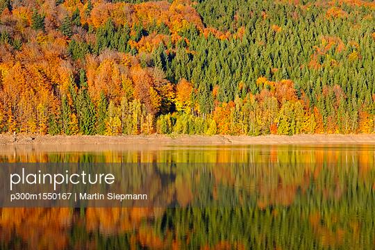 p300m1550167 von Martin Siepmann