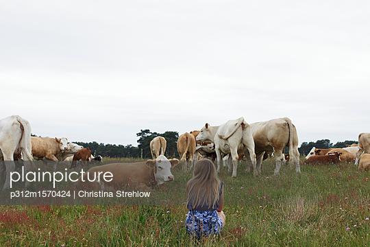 Teenage girl on pasture - p312m1570424 by Christina Strehlow