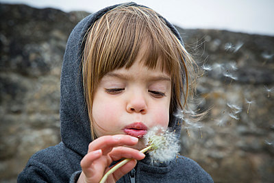Portrait of little girl blowing blowball - p300m929971f by Larissa Veronesi