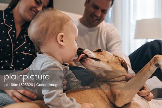p1166m1523320 von Cavan Images