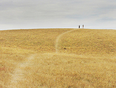 A path going through grassy hills - p3484134 by Signe Vad