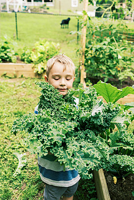 A boy holding a bouquet of kale in his hands in the vegetable garden - p1166m2201483 by Cavan Images