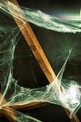 Künstliche Spinnweben an der Decke - p1248m1185561 von miguel sobreira