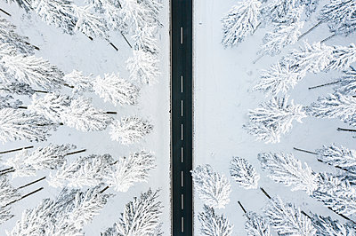 Wintry road and forest - p713m2289268 by Florian Kresse