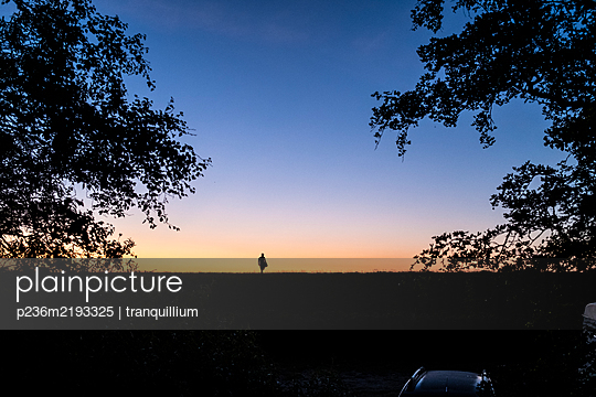 Sunset at the dyke - p236m2193325 by tranquillium