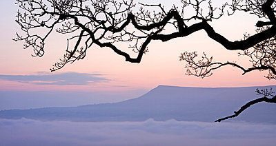 Mynydd Troed mountain rising above a mist filled valley at dawn, Brecon Beacons National Park, Powys, Wales, United Kingdom, Europe - p871m711397 by Adam Burton