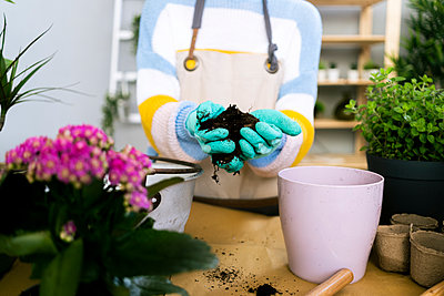 Young woman working in a gardening laboratory or plant shop - p300m2274585 von Giorgio Fochesato