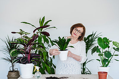 Senior woman holding potted plant against wall at home - p300m2264968 by Eva Blanco