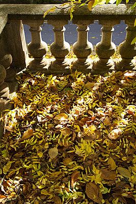 Past balustrade - p813m956625 by B.Jaubert