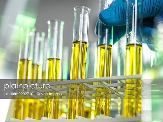 Oil samples being developed for medicine and chemicals - p1166m2292710 by Cavan Images
