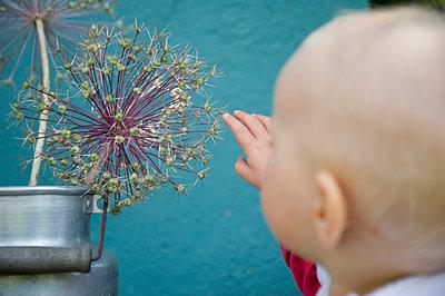 vorsichtiges Kind - p116m1468103 von Gianna Schade