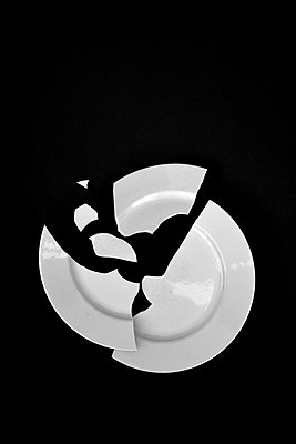 Broken plate - p876m858684 by ganguin
