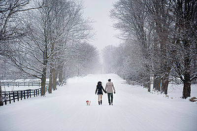 Young couple walking dog in snow covered forest, rear view, Ontario, Canada - p429m2050842 by Sara Monika