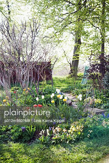 Spring flowers in garden - p312m993168f by Lina Karna Kippel