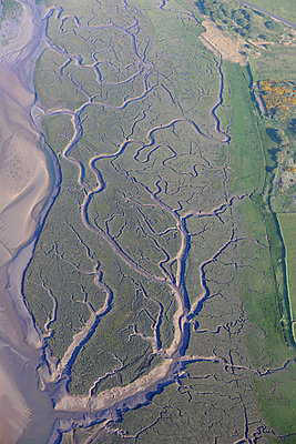 River estuary pattern - p1048m1182457 by Mark Wagner