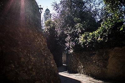 old street of portofino - p1007m1424566 by Tilby Vattard