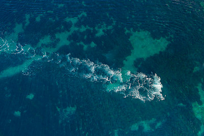Backwash in the blue sea, aerial view - p1437m2283322 by Achim Bunz