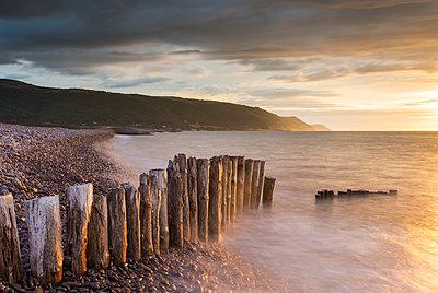 Weathered wooden posts on Bossington Beach, Exmoor National Park, Somerset, England, United Kingdom, Europe - p871m1082170 by Adam Burton