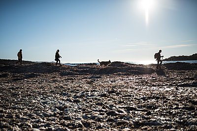 Family and dog silhouettes walking along the sea - p1007m1540418 by Tilby Vattard
