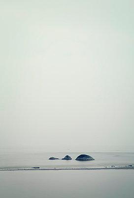 Felsen im Meer, Poel - p992m1016119 von Carmen Spitznagel
