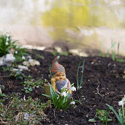 Garden gnome - p992m791673 by Carmen Spitznagel