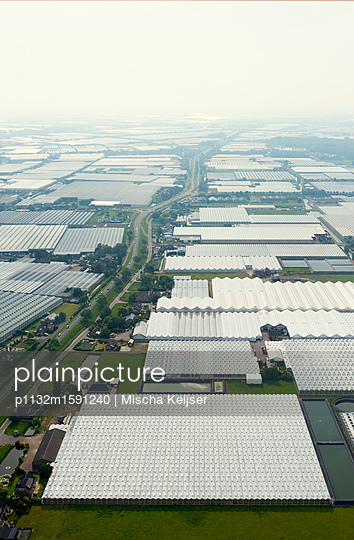 Westland greenhouses - p1132m1591240 by Mischa Keijser