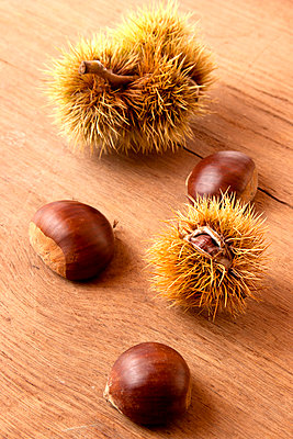 Chestnut - p3820443 by Anna Matzen