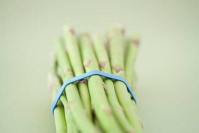 Bunch of green asparagus - p4950217 by Jeanene Scott
