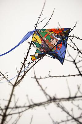 Kinderdrachen hängt fest - p739m1529093 von Baertels