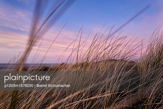 Dünenlandschaft bei Sonnenuntergang - p1203m1578230 von Bernd Schumacher