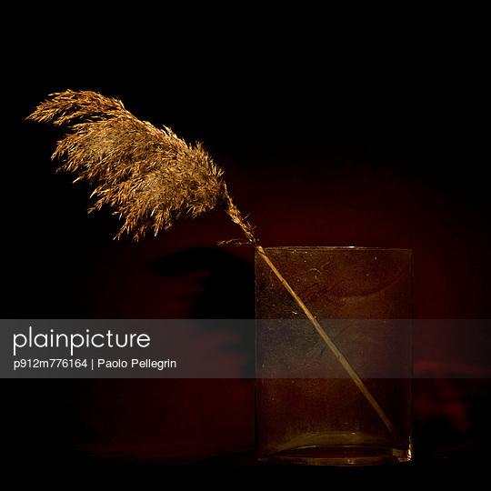 p912m776164 von Paolo Pellegrin