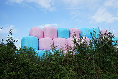 Colorful hay bales against cancer - p1610m2229213 by myriam tirler