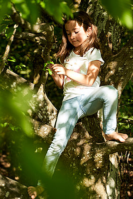 Girl holding leaves while sitting on tree trunk - p300m2197365 by Stefanie Aumiller