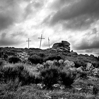 Wild landscape - p813m740982 by B.Jaubert