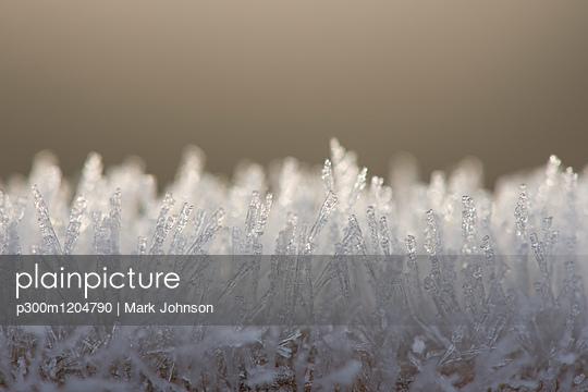 p300m1204790 von Mark Johnson