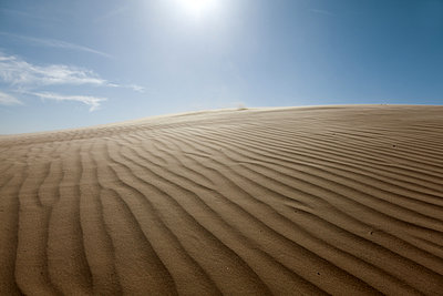 Rippled surface of sandy beach - p1168m1043220 by Thomas Günther