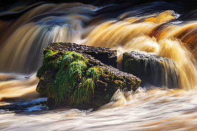 Rocks in Aysgarth Falls, a triple flight of waterfalls of the River Ure in the Yorkshire Dales of England, near the village of Aysgarth; North Yorkshire, England - p442m1580382 by Philip Payne