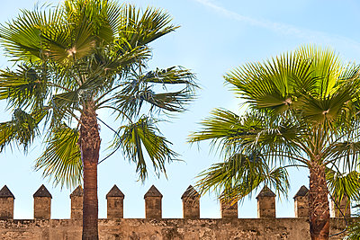 Old Town of Palma with city wall - p885m1424889 by Oliver Brenneisen