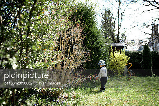 Little boy watering plants in the garden in Spring on a sunny day - p1166m2090682 by Cavan Images