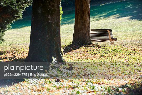 Empty bench in public park - p623m2294775 by Eric Audras