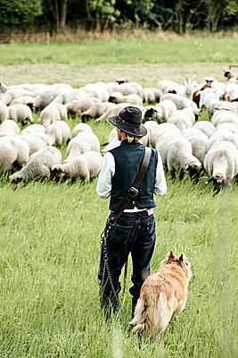 Die Schäfer - p1439m1496581 von Saskia Uppenkamp
