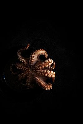 Octopus - p1276m2127026 by LIQUID