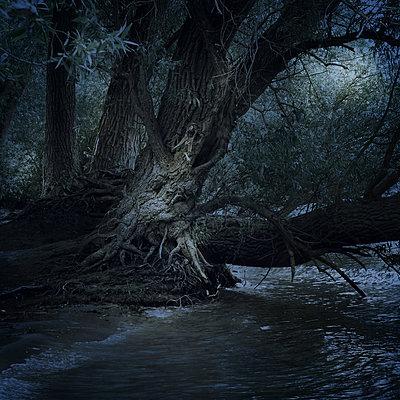 The Haunted River - p1633m2220233 by Bernd Webler