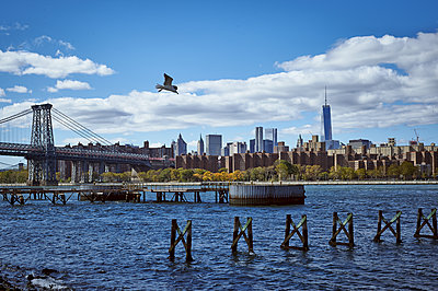 View of New York City - p851m1214833 by Lohfink