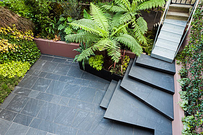 Patio garden at basement level at the Morgan house in Notting Hill, London, UK - p855m713305 by Pedro Silmon
