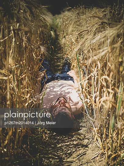 Man lying in cornfield - p1267m2014014 by Wolf Meier